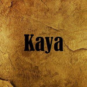 Луки Kaya