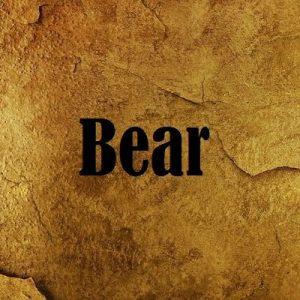 Луки Bear Archery